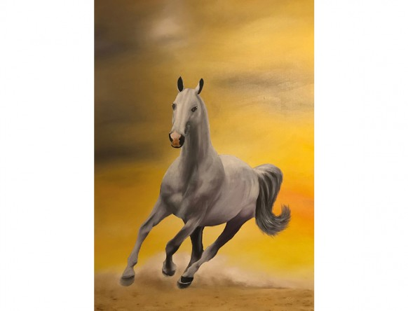 Sunrise Stallion A5 Greeting Card