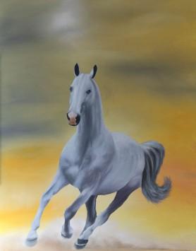 Sunrise Stallion by Melanie Elliott. Large original oil painting.
